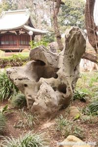 喜多見氷川神社(世田谷区喜多見)15