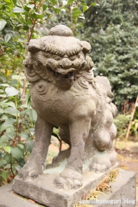 喜多見氷川神社(世田谷区喜多見)32