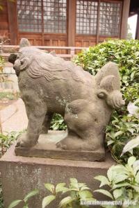 喜多見氷川神社(世田谷区喜多見)38