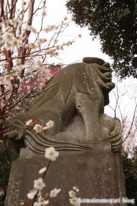 喜多見氷川神社(世田谷区喜多見)42
