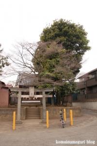 白幡菅原神社(狛江市猪方)1