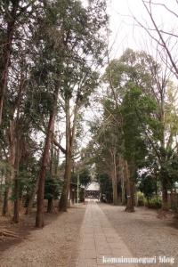 伊豆美神社(狛江市中和泉)8