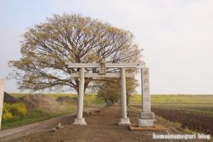 白山神社(羽生市上新郷)1