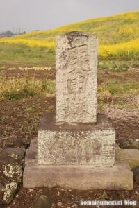 白山神社(羽生市上新郷)10