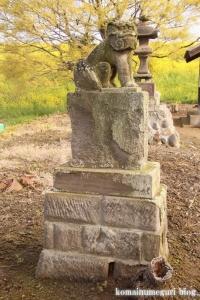 白山神社(羽生市上新郷)18