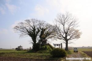 浅間神社(行田市須賀)8