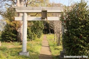浅間神社(羽生市上新郷)2