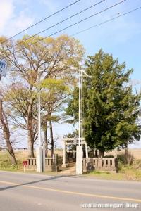 羽黒神社(羽生市下新田)1