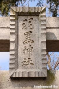 羽黒神社(羽生市下新田)3