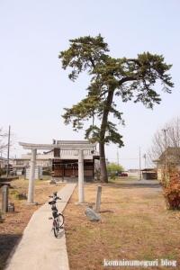 八幡神社(羽生市下岩瀬)1