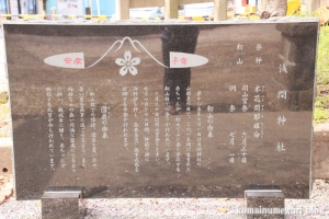 古江宮田神社(羽生市西)5