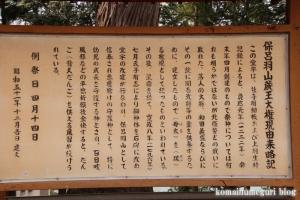 蔵王大権現(羽生市西)5