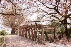 城堂稲荷神社(羽生市上新郷)11