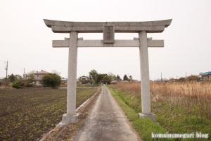 天神社(羽生市上川俣)1