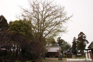 天神社(羽生市上川俣)5