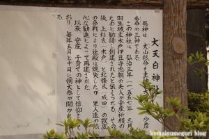大白天神社(羽生市北)4