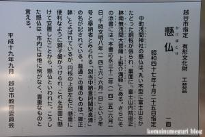 浅間神社(越谷市中町)11
