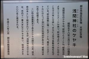 浅間神社(越谷市中町)12