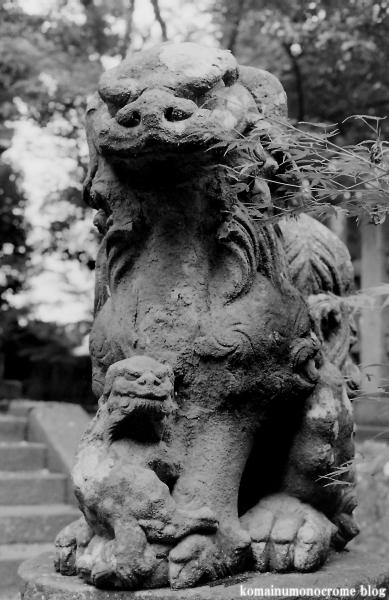三国神社(福井県坂井市三国町山王)1