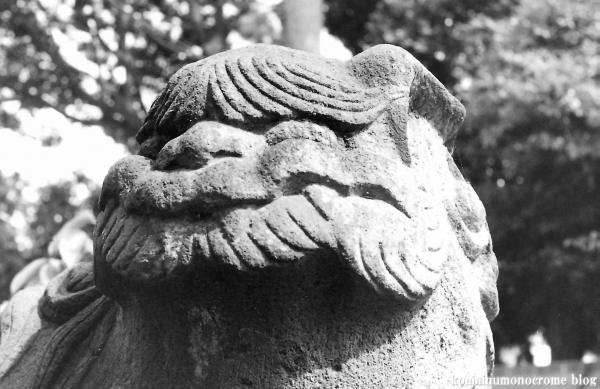 諏訪神社(川崎市高津区諏訪)4