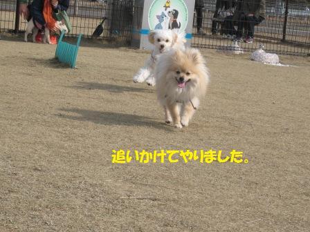 201450315_9.jpg