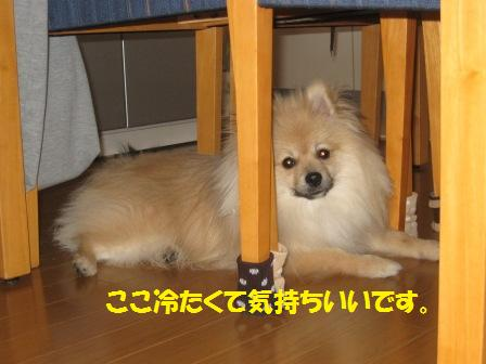 201450316_6.jpg