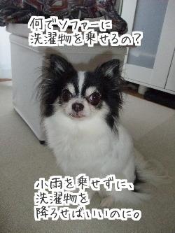 AoQ_efxHakAoAfz1421204707_1421204896.jpg