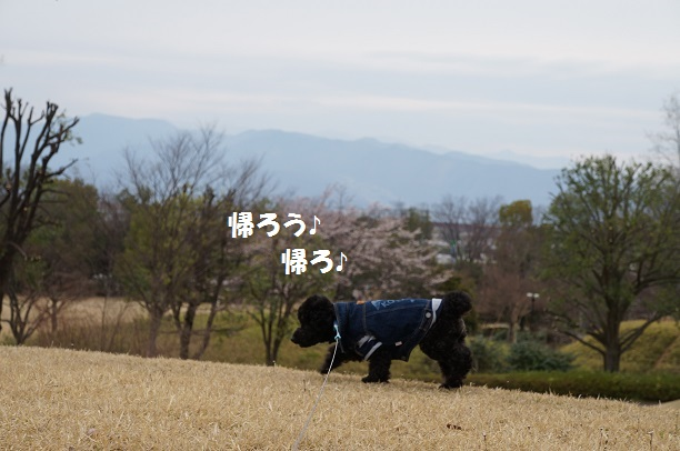 20150329-67
