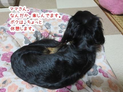 IMG_270716_2.jpg
