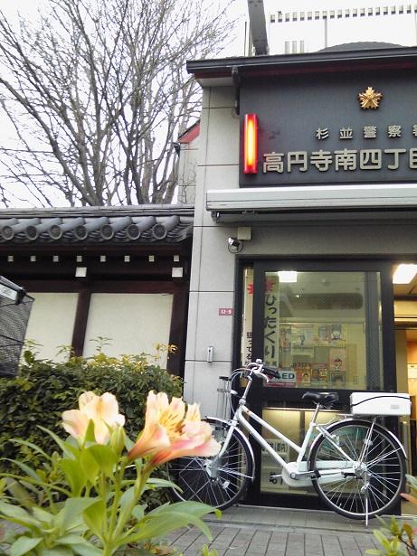 高円寺植栽2015_01