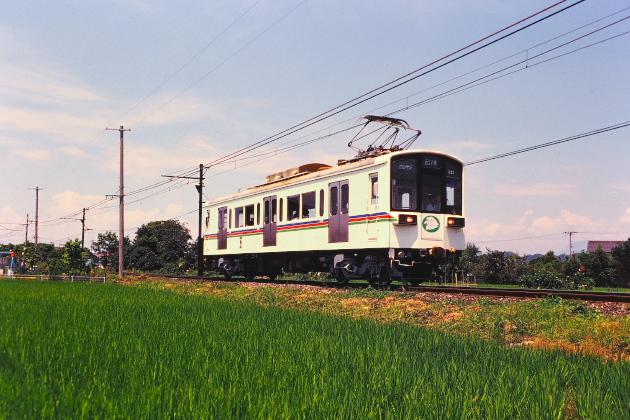 P1207559.jpg