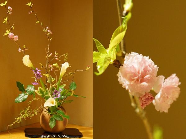 4月のお花1