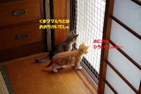 IMGP6643-②