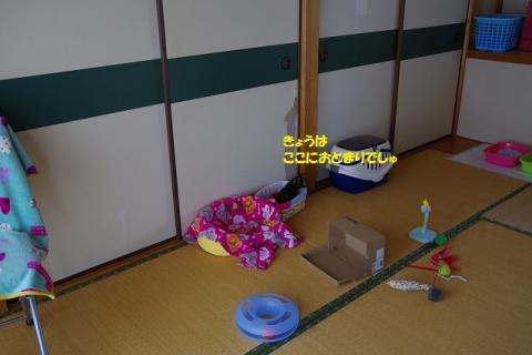 IMGP6654-②
