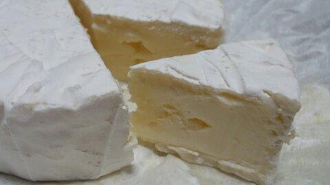 神戸チーズ②