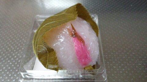 たねや桜餅①