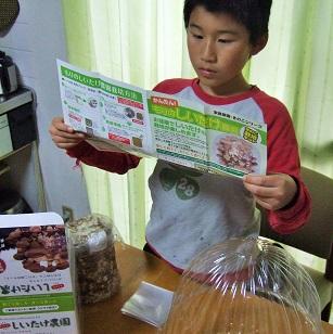 2014年12月-椎茸栽培0日目-01