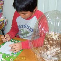 2014年12月-椎茸栽培0日目-03