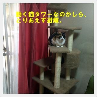 IMG_7040.jpg