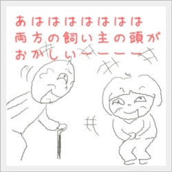 mekuso5.jpg