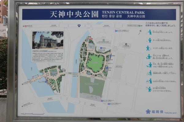 天神中央公園9