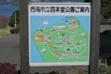 四本堂公園キャンプ場3