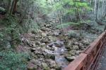 右谷山登山道4