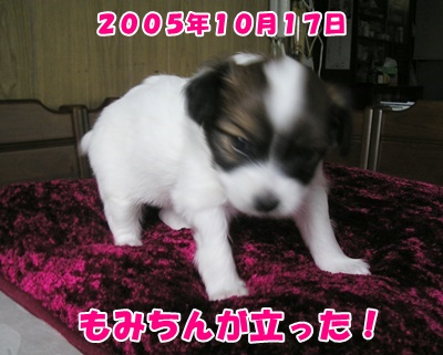 150222 (3)