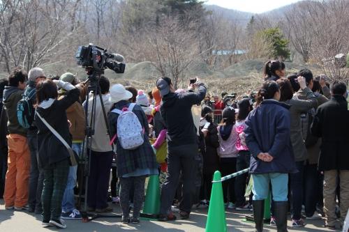201504円山動物園 (1)