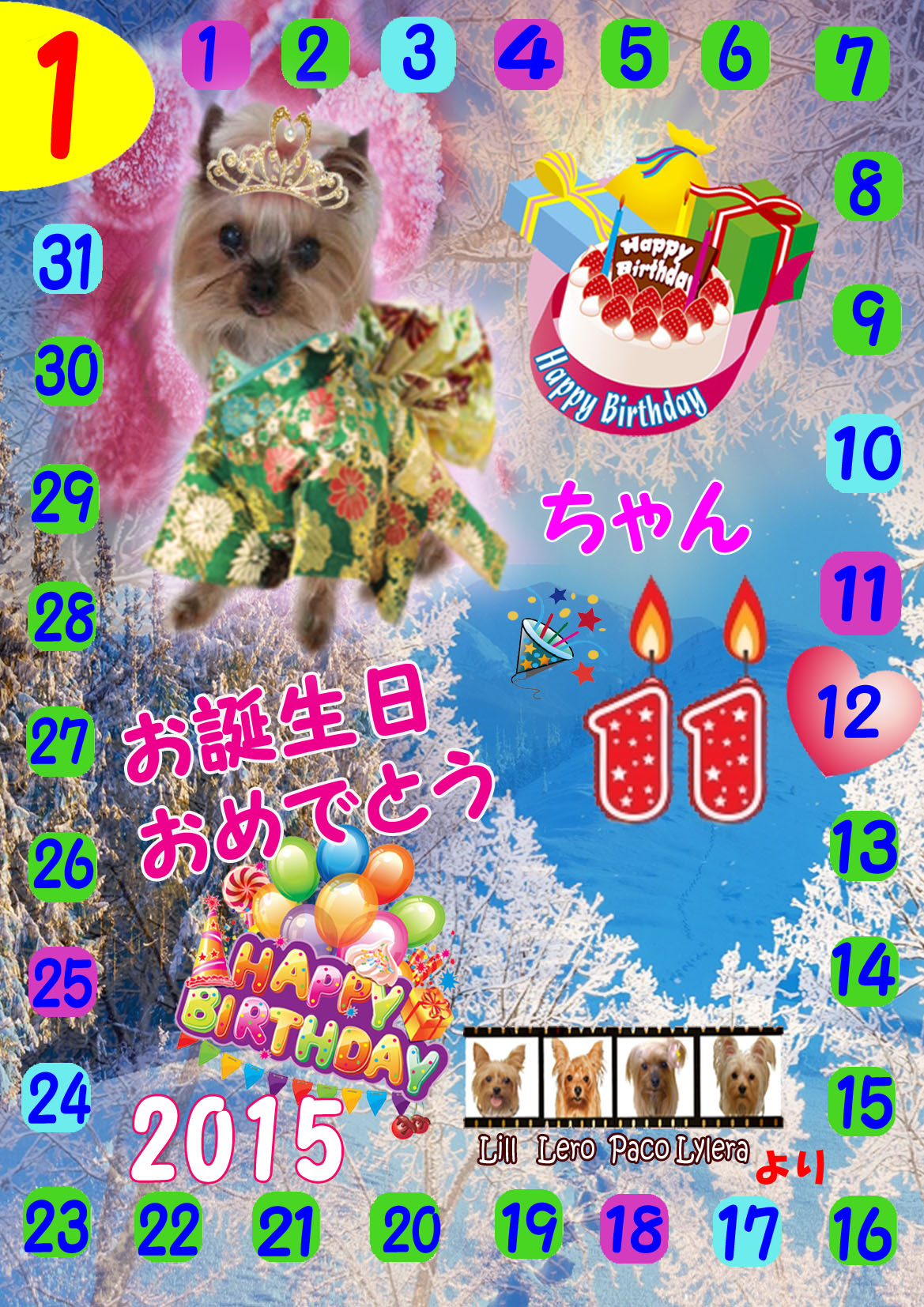 2015-01-12ちこりちゃん(あられママさん)11歳お誕生日カード