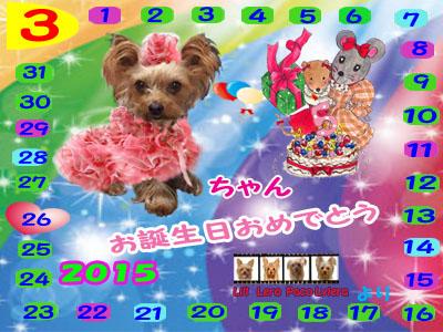 2015-03-26ミルちゃんお誕生日カード(PC)