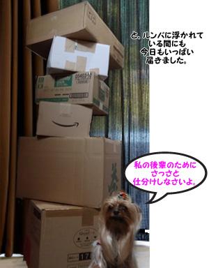 image03[1]
