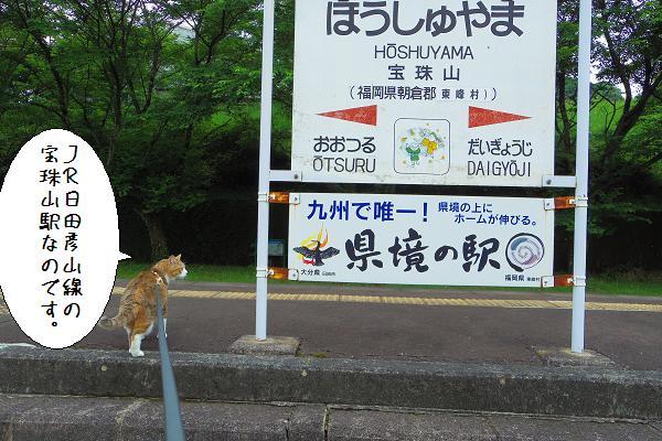 宝珠山駅5