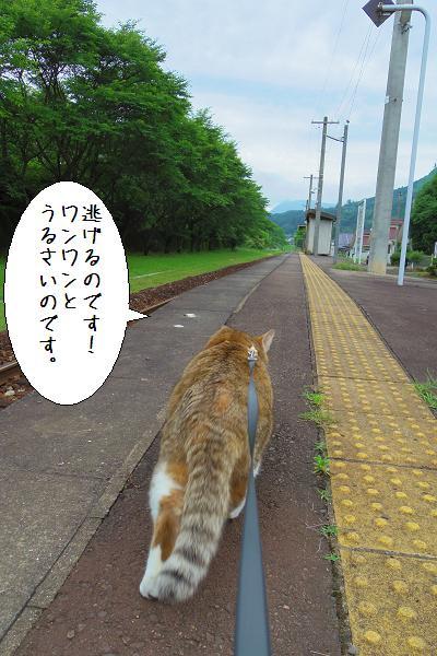 宝珠山駅8